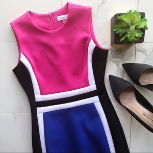 Calvin Klein Pink & Blue Colorblock Fitted Dress